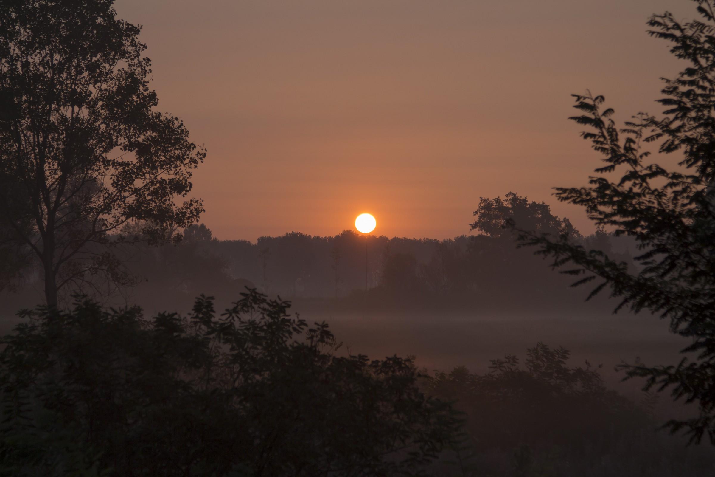 Sunrise in the Parco Adda Sud...