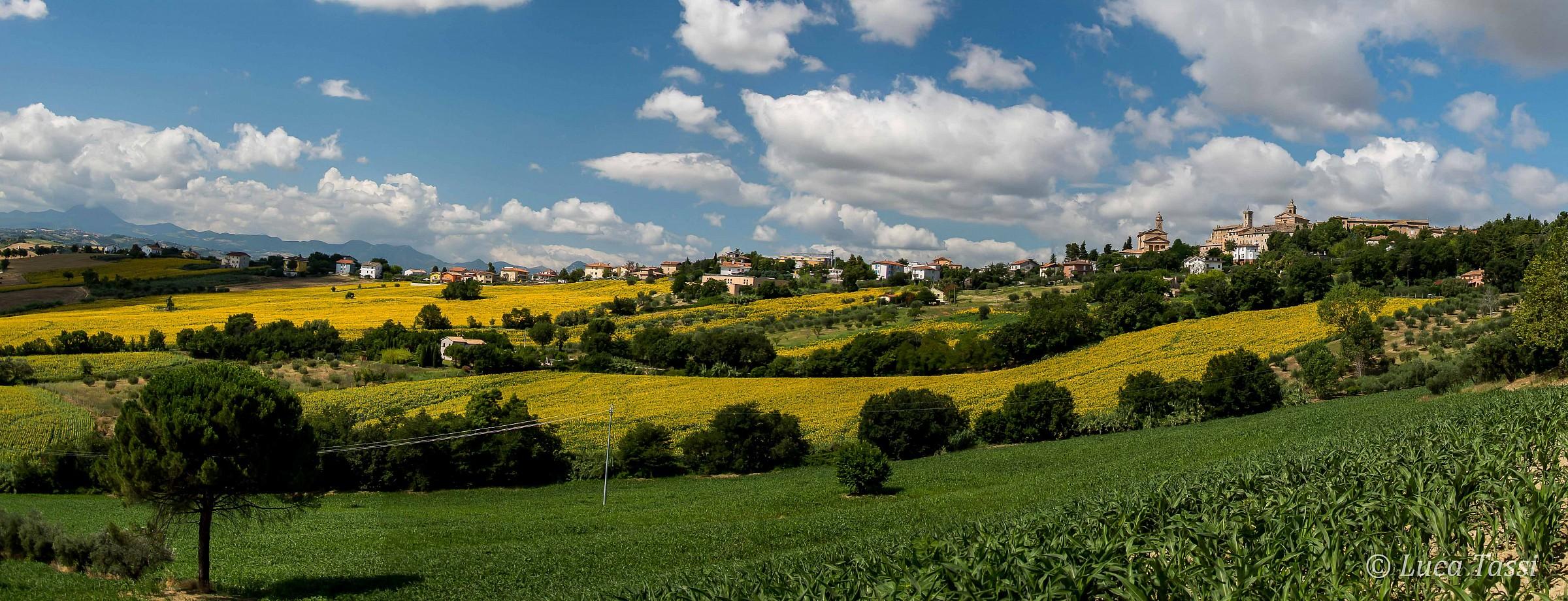 Panorama di Belvedere Ostrense...