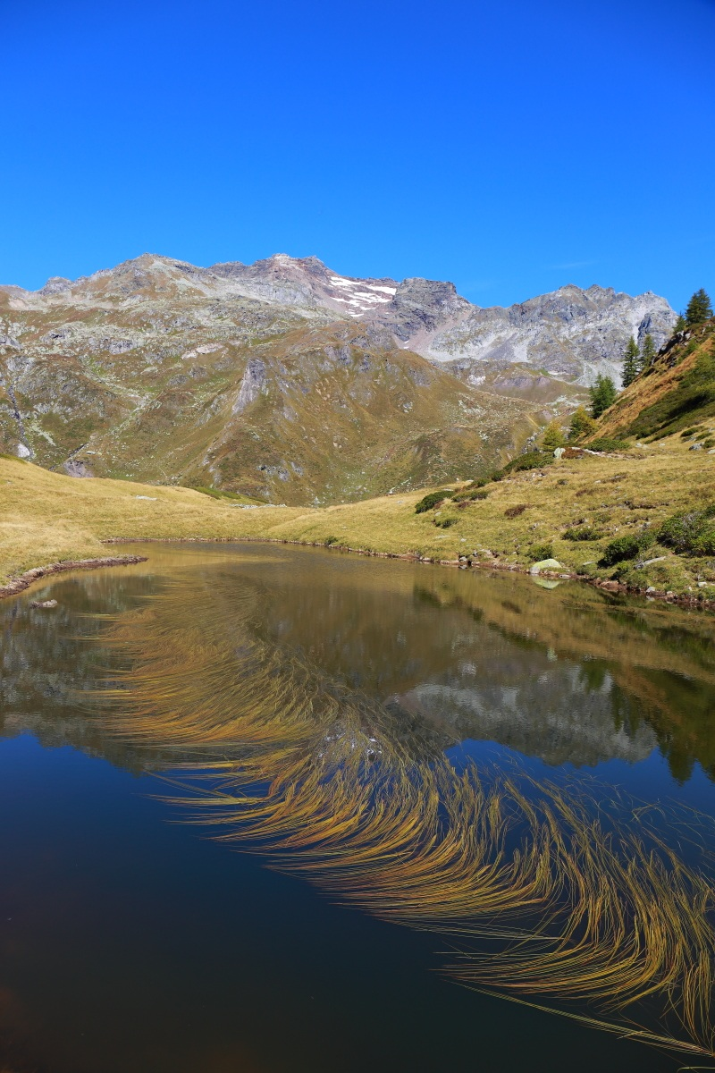 pond devero...