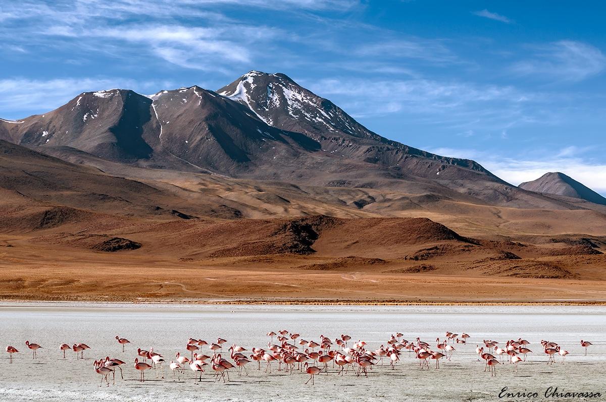 Bolivia: ruta los desiertos...