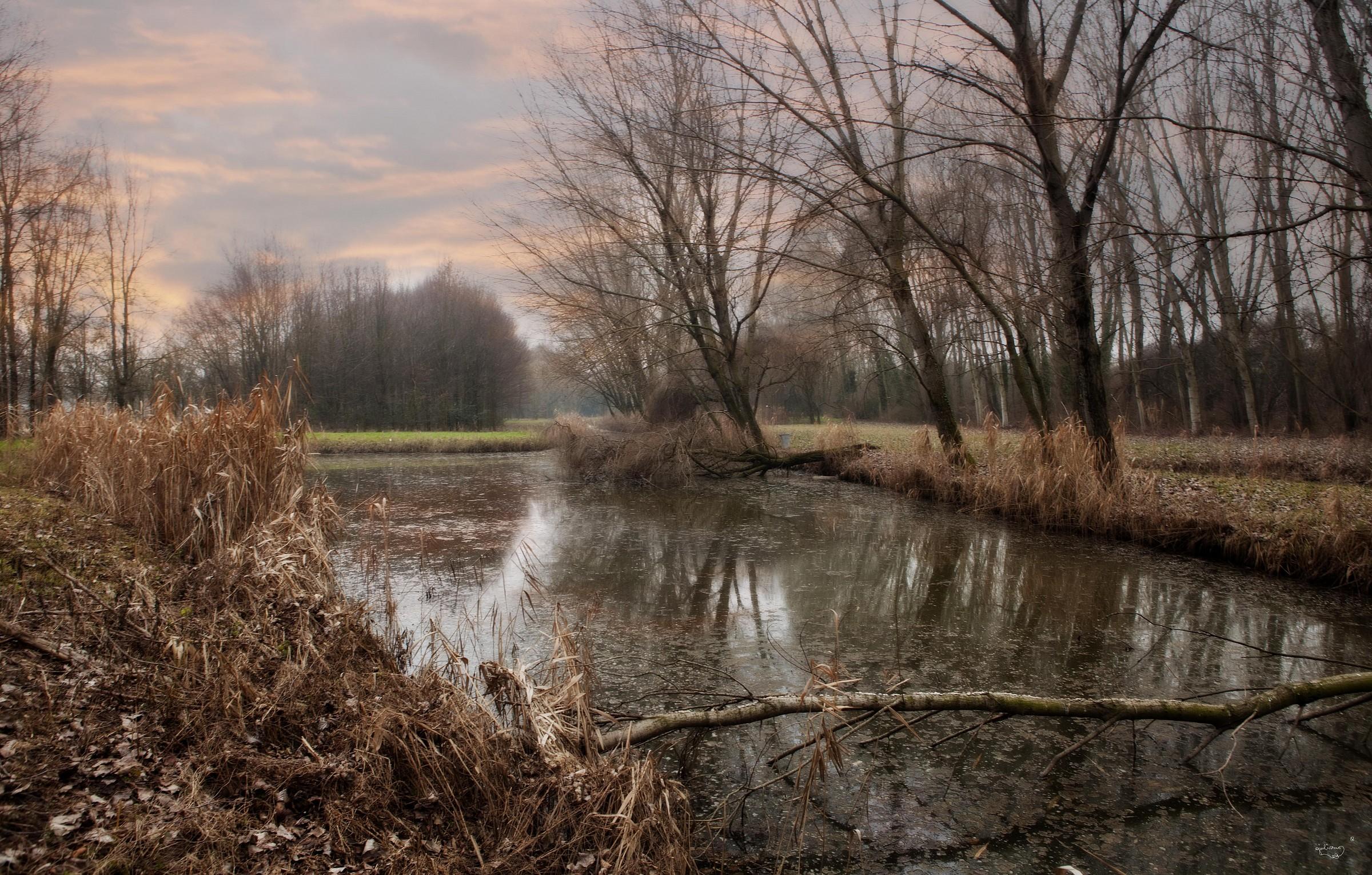 Pond at sunset...