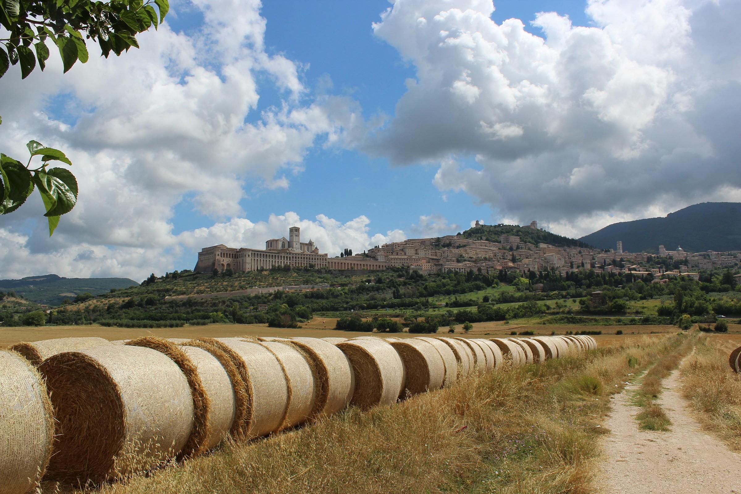 Assisi...