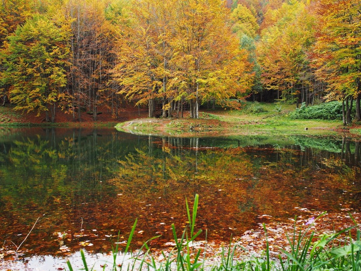 Autumn at the Lake Tschafon...