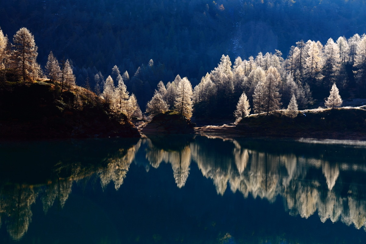 the play of light on the lake...
