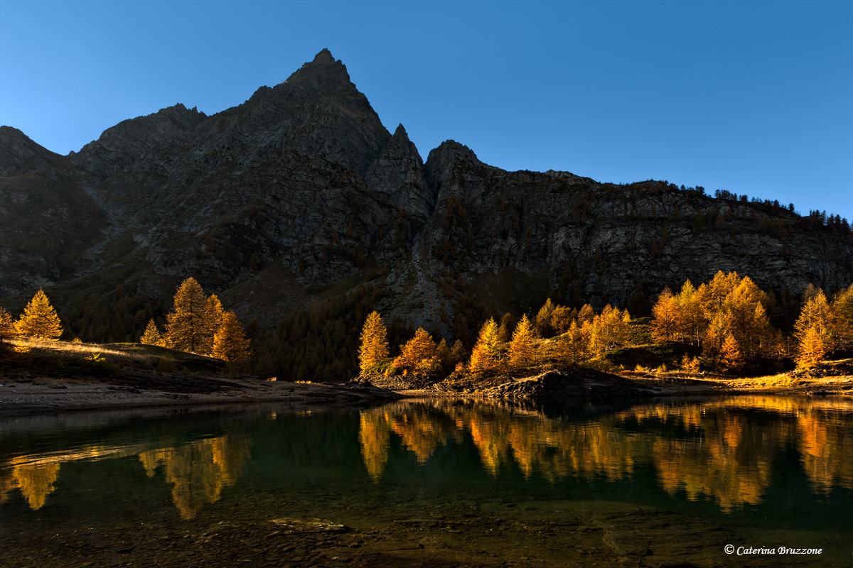Last rays of autumn...