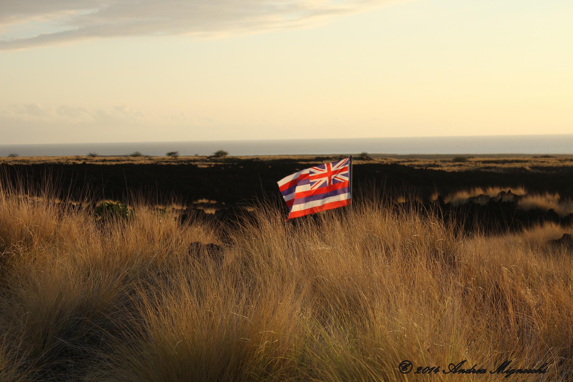 Hawaiian Symbol...