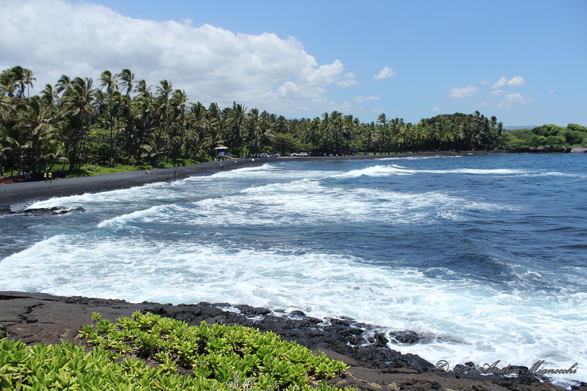 Punalu'u Black Sand Beach...