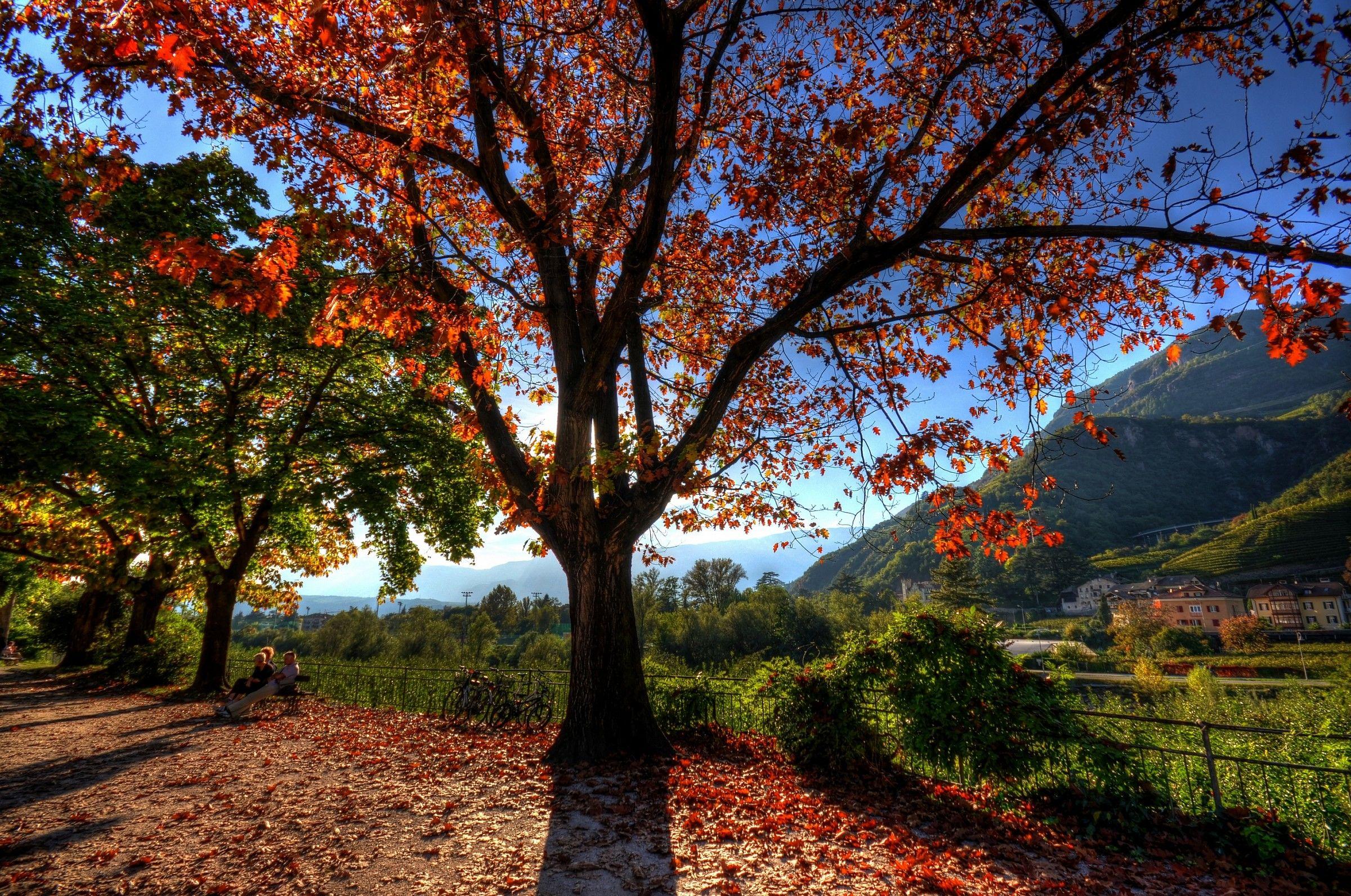 Autumn_09...
