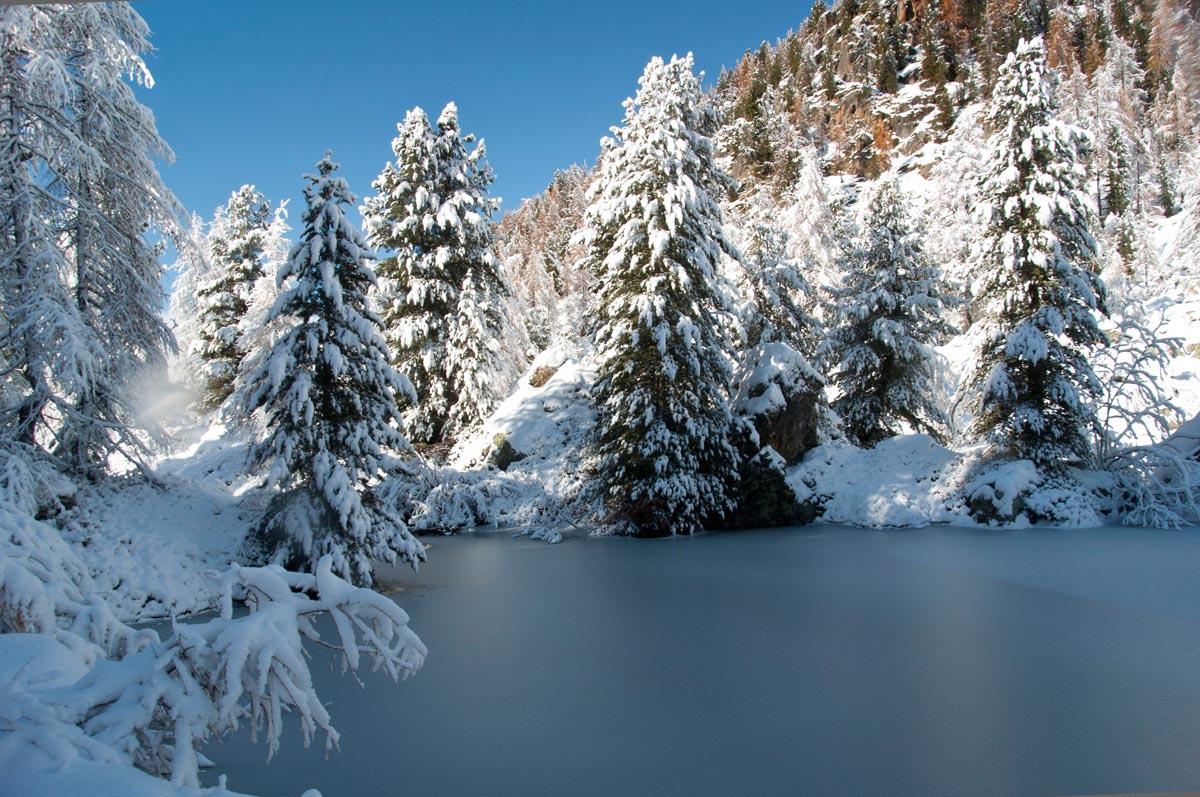l'inverno ha sconfitto l'autunno...