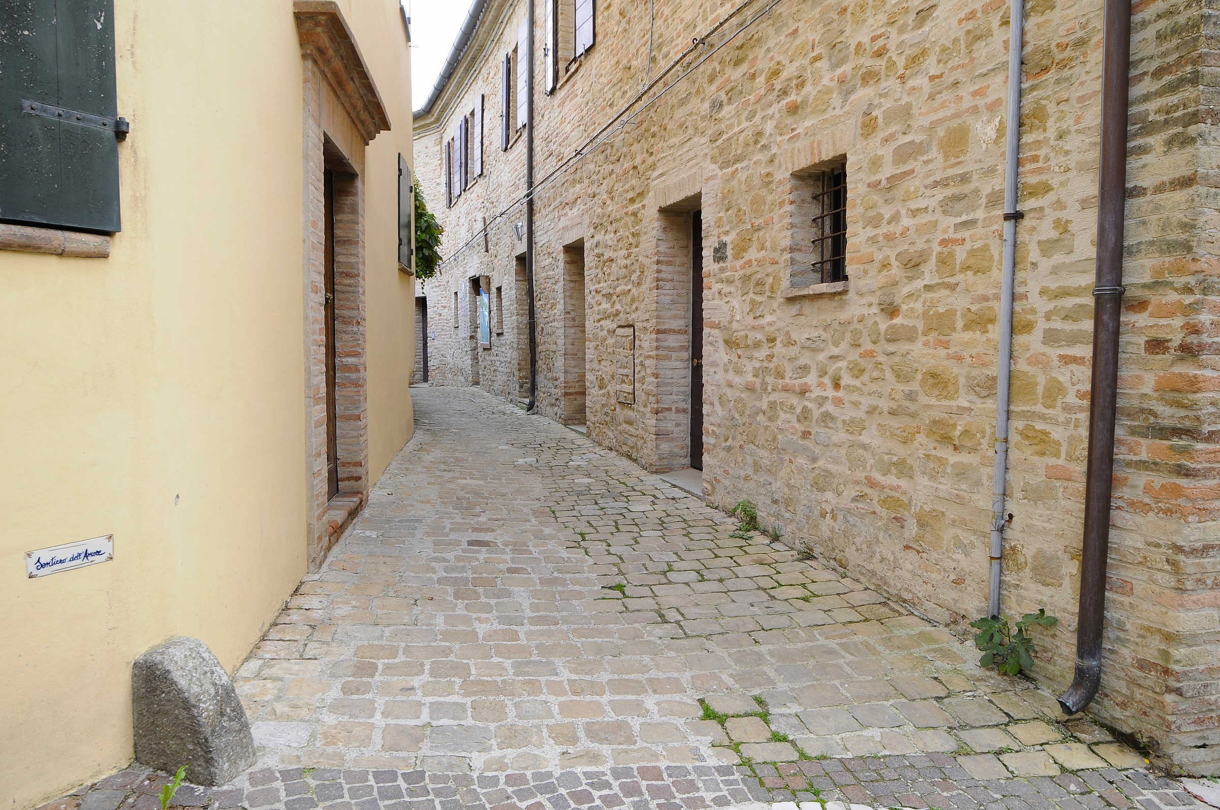 alley in the village...