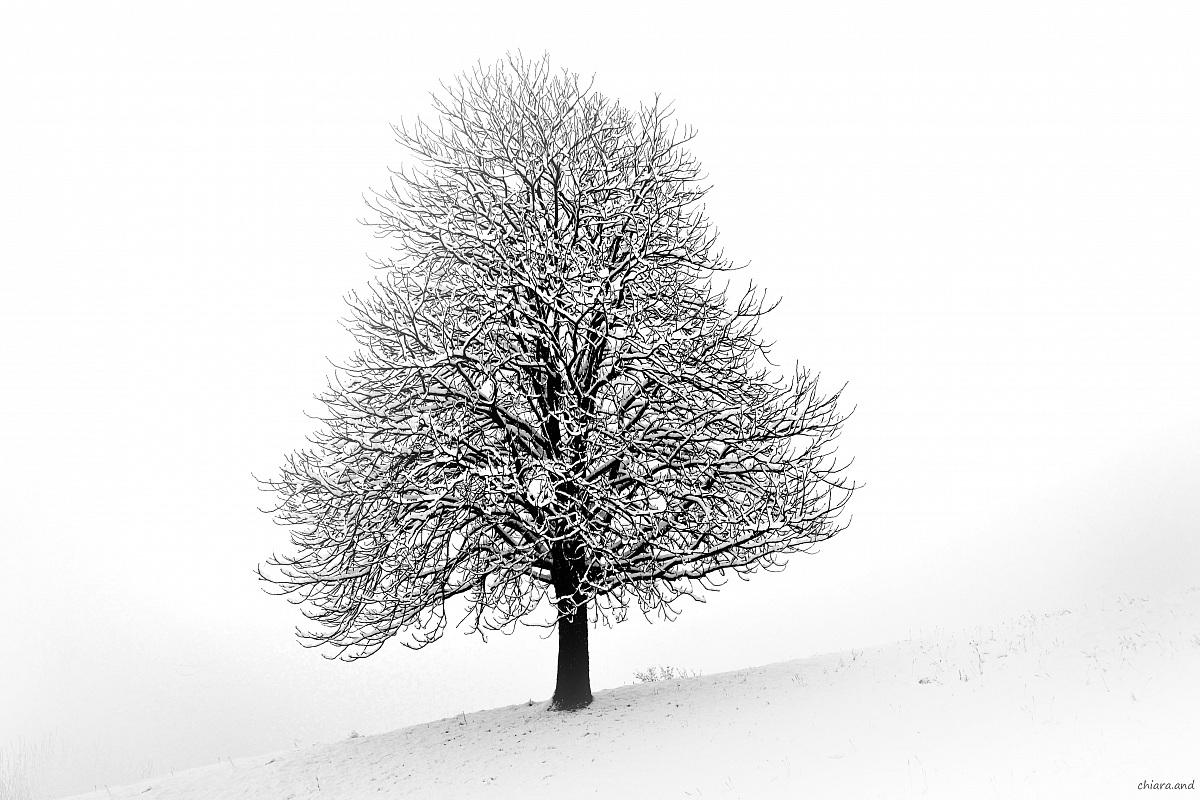 Tu....io,  e la neve ........