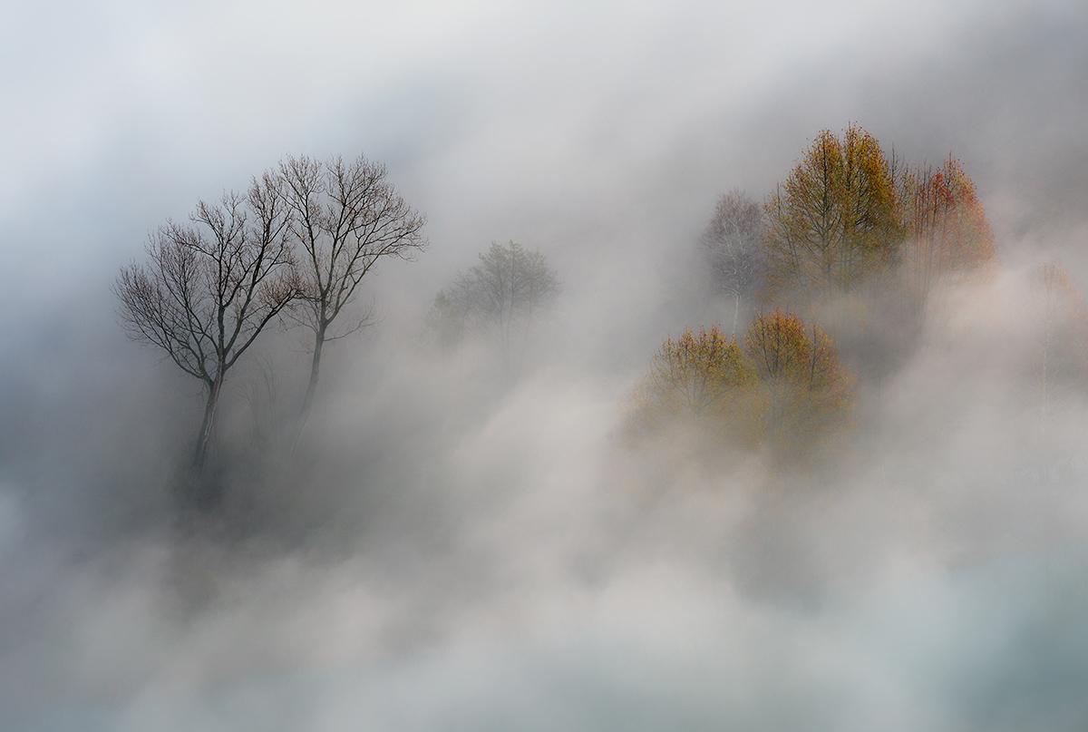 Autumn Winter Vs....