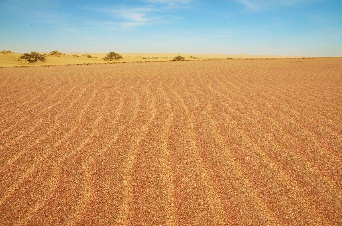 Namibian desert...
