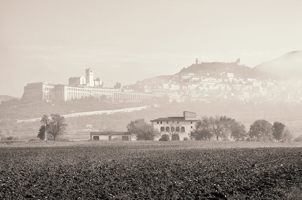 Fog of Assisi...