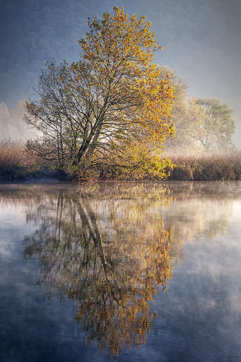 Autumn in the mirror...
