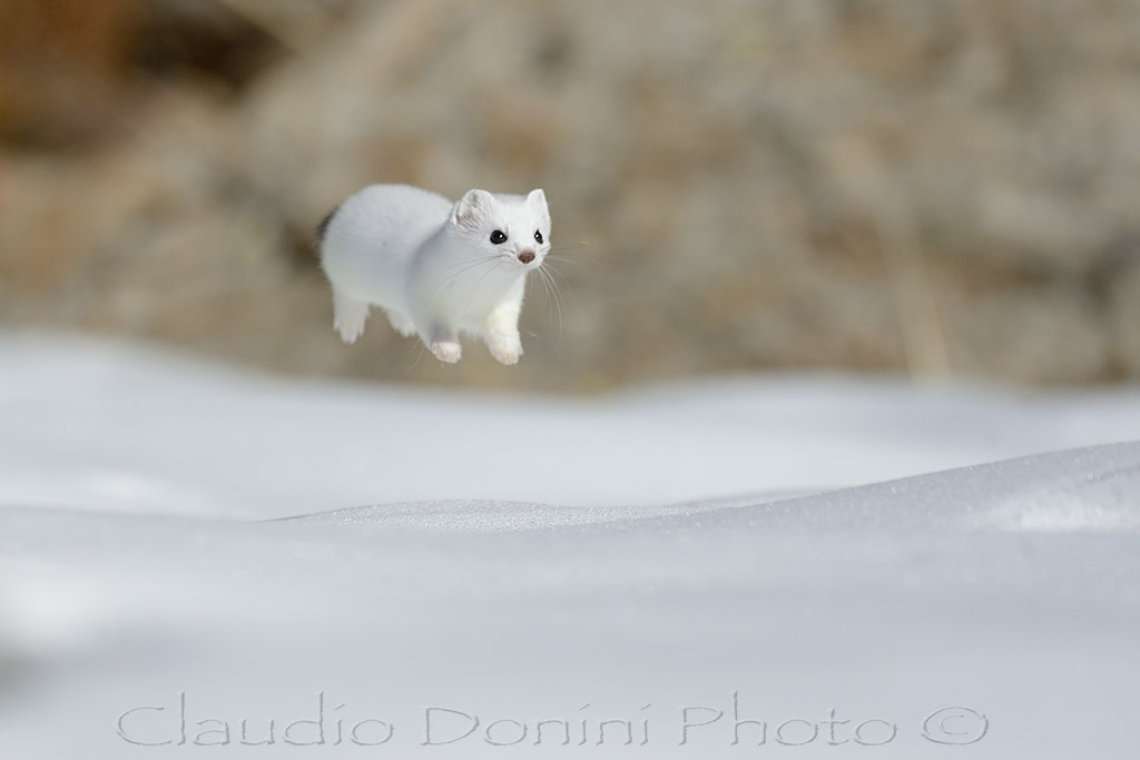 Levitation ...:-)...