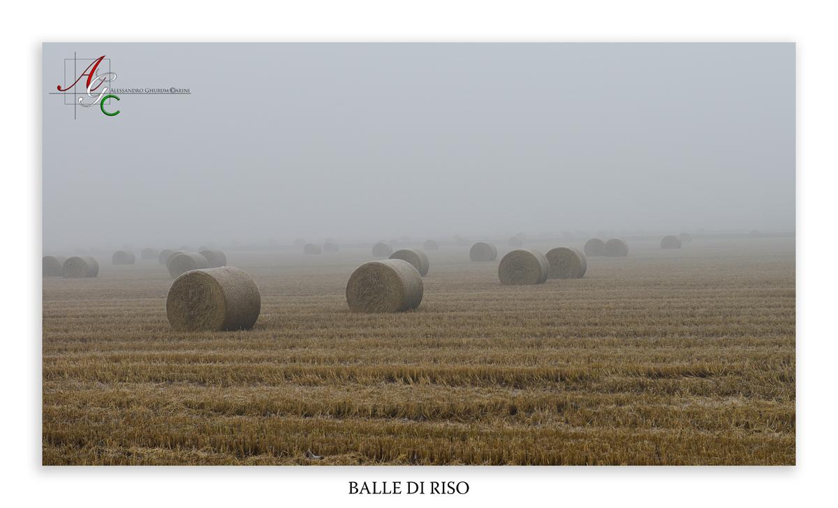 Bales of rice...