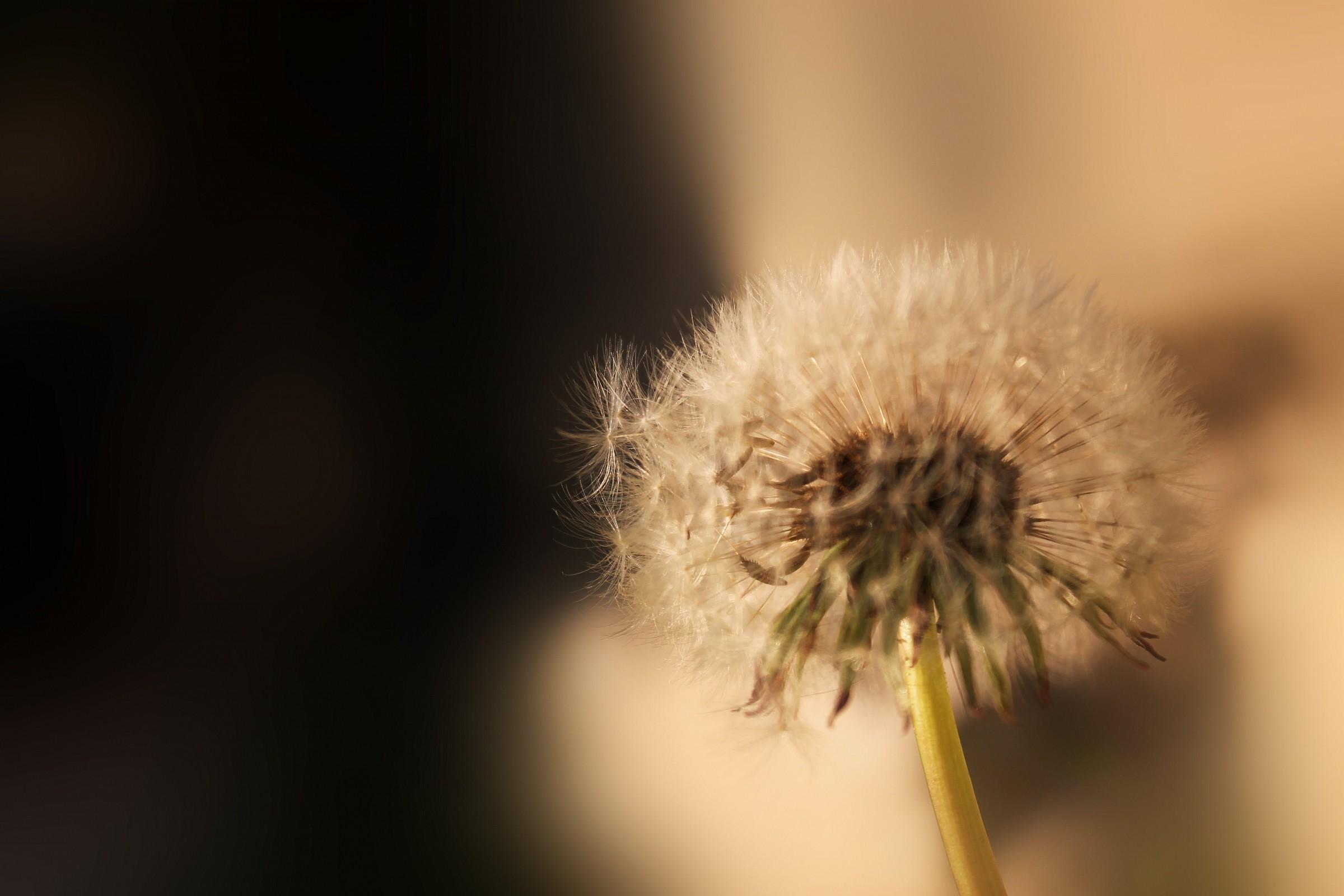 Untitled Photo...