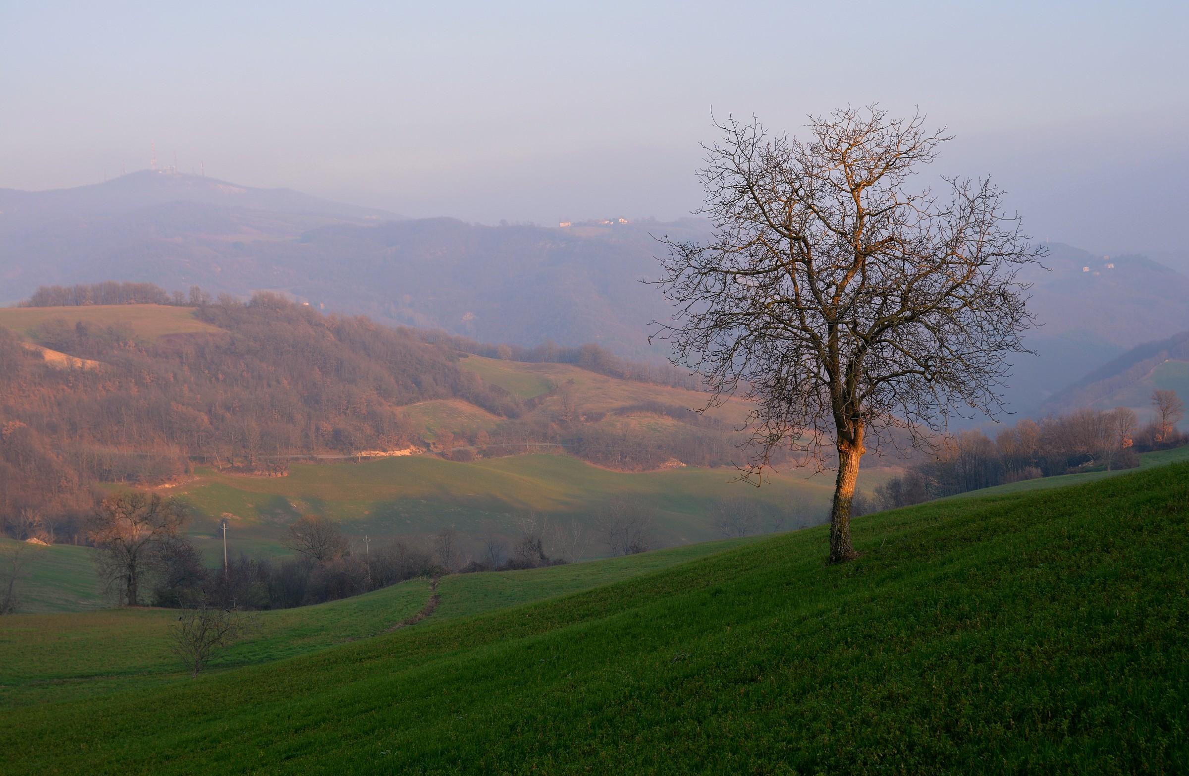 Hills Pellegrino Parmense...