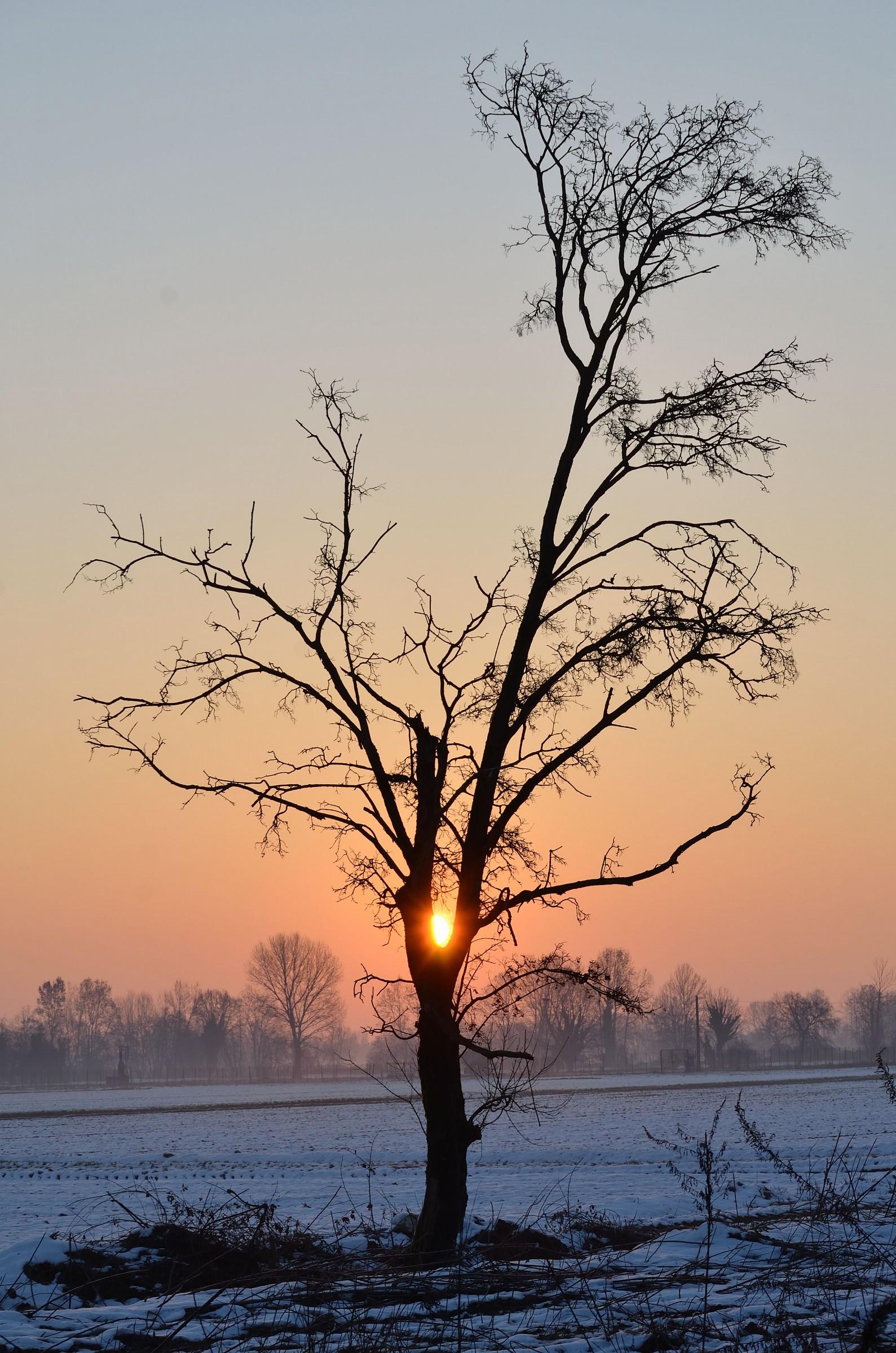 January 1, 2015 the dawn auguroni €€€ €€€...