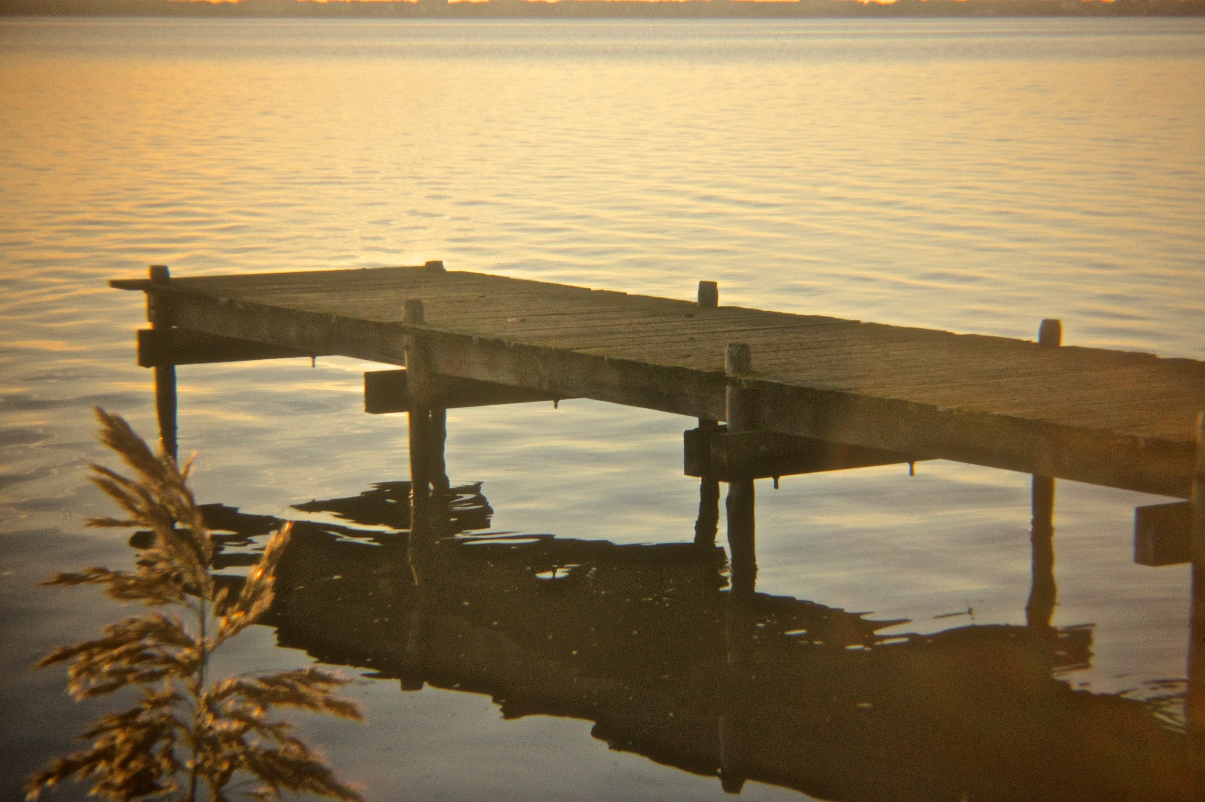 Pontile sulla Laguna...