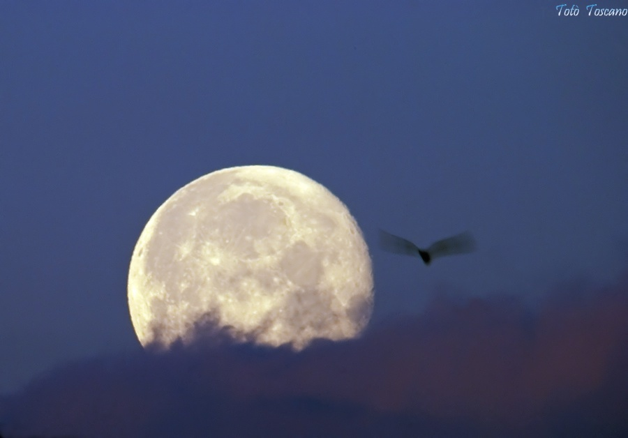The moon and the unexpected...