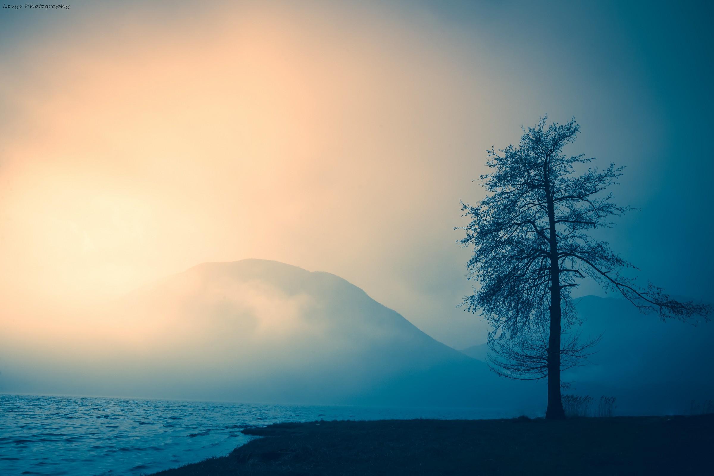nella nebbia da solo...