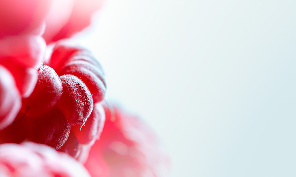 Raspberry...