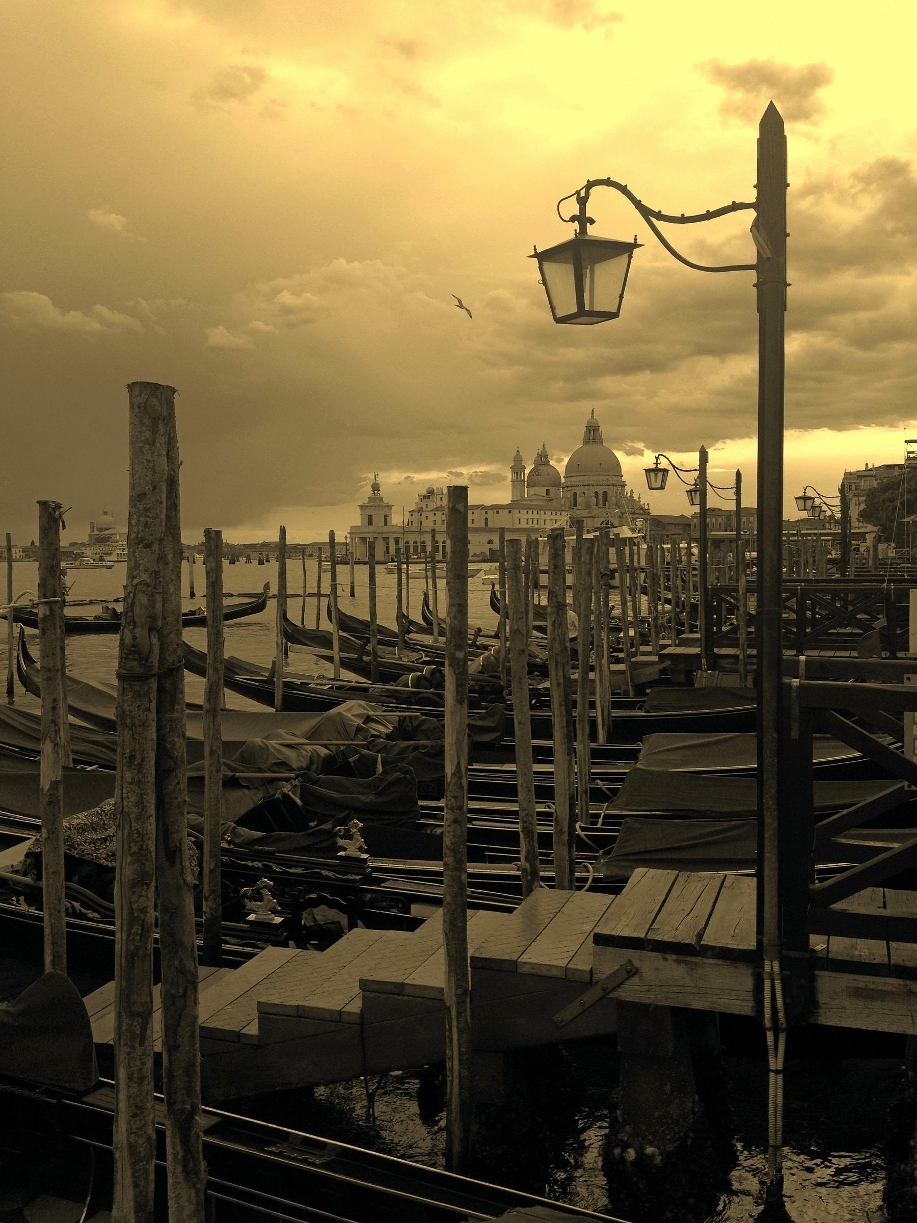 longing Venetian...