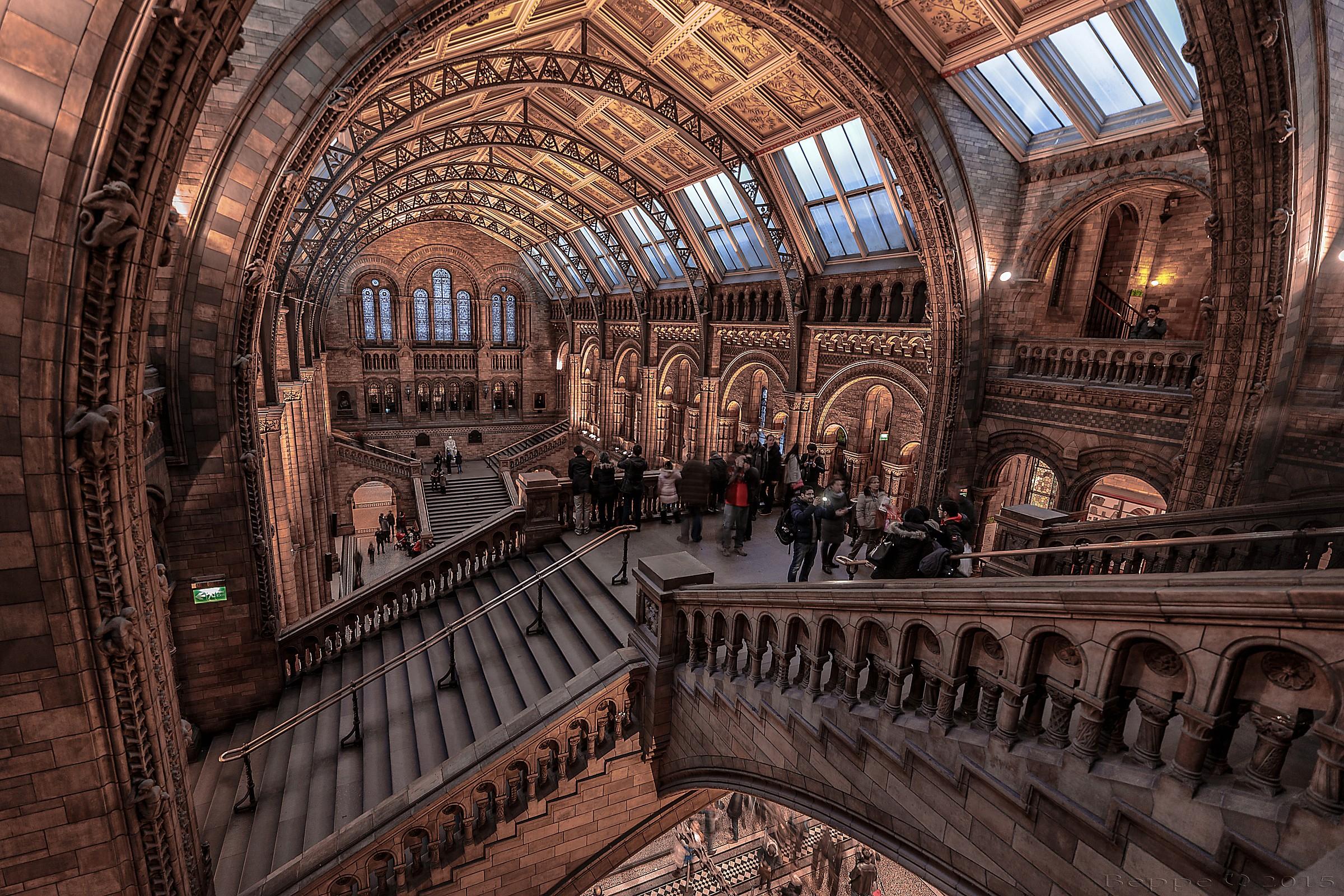 Natural History Museum...