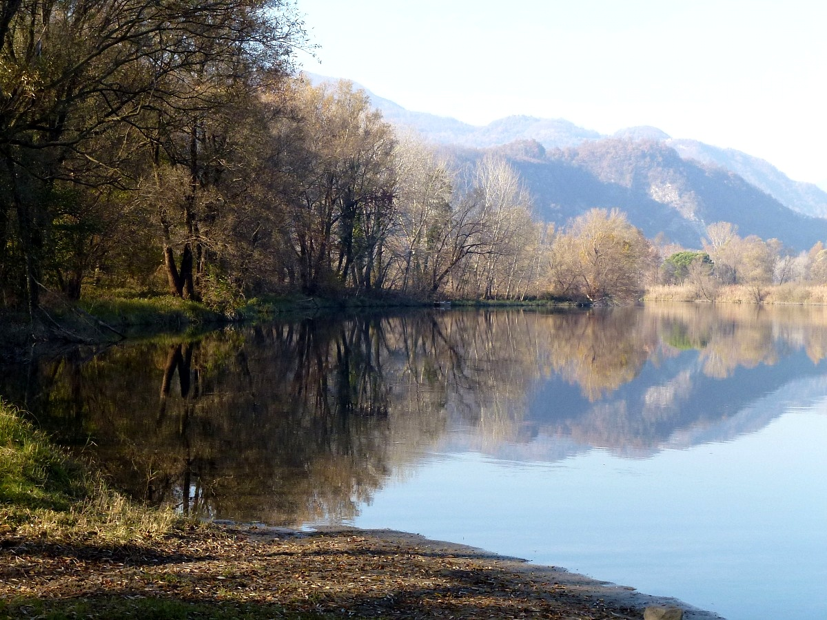 Adda, riflessi d'autunno nelle acque calme del fiume...