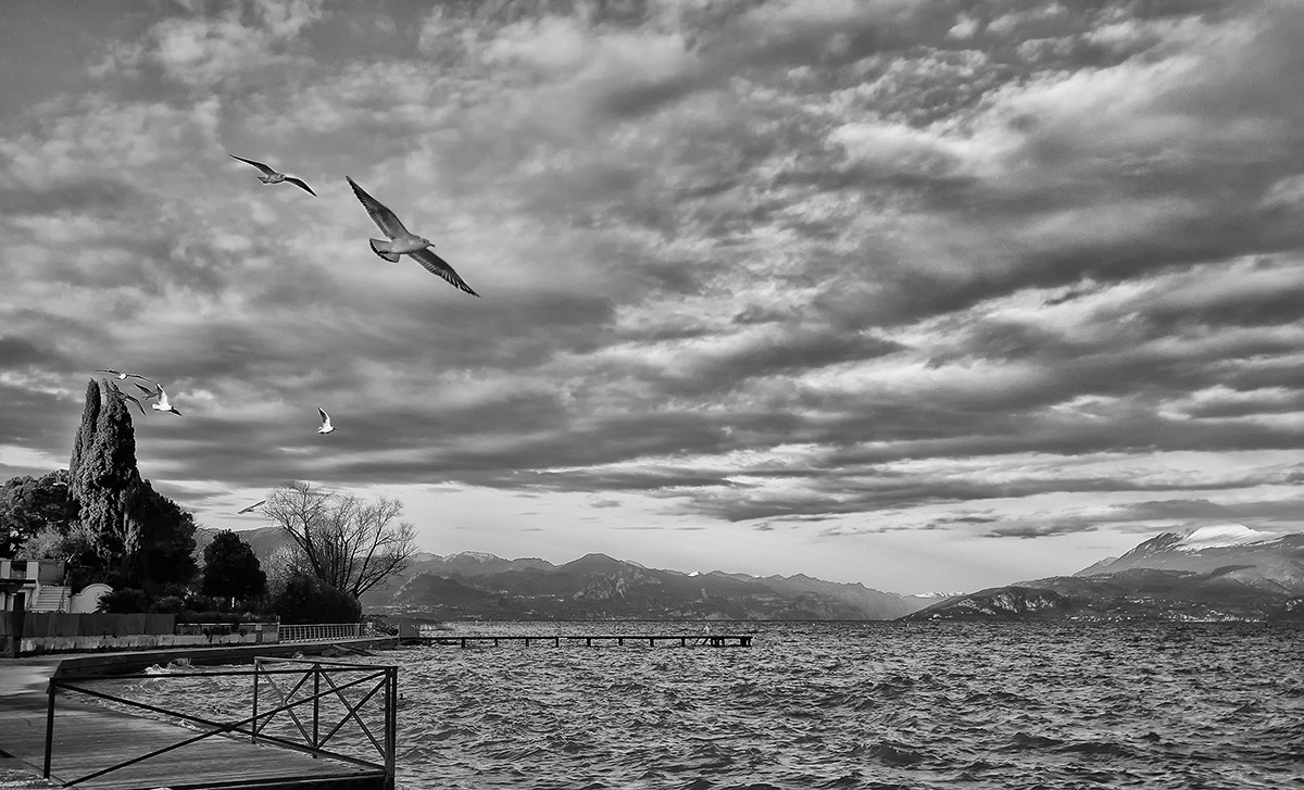 Volare in pace...