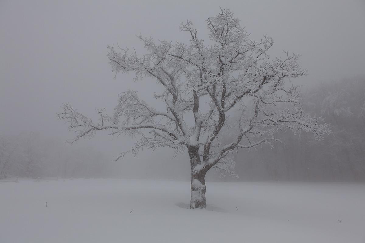 Winter atmosphere...