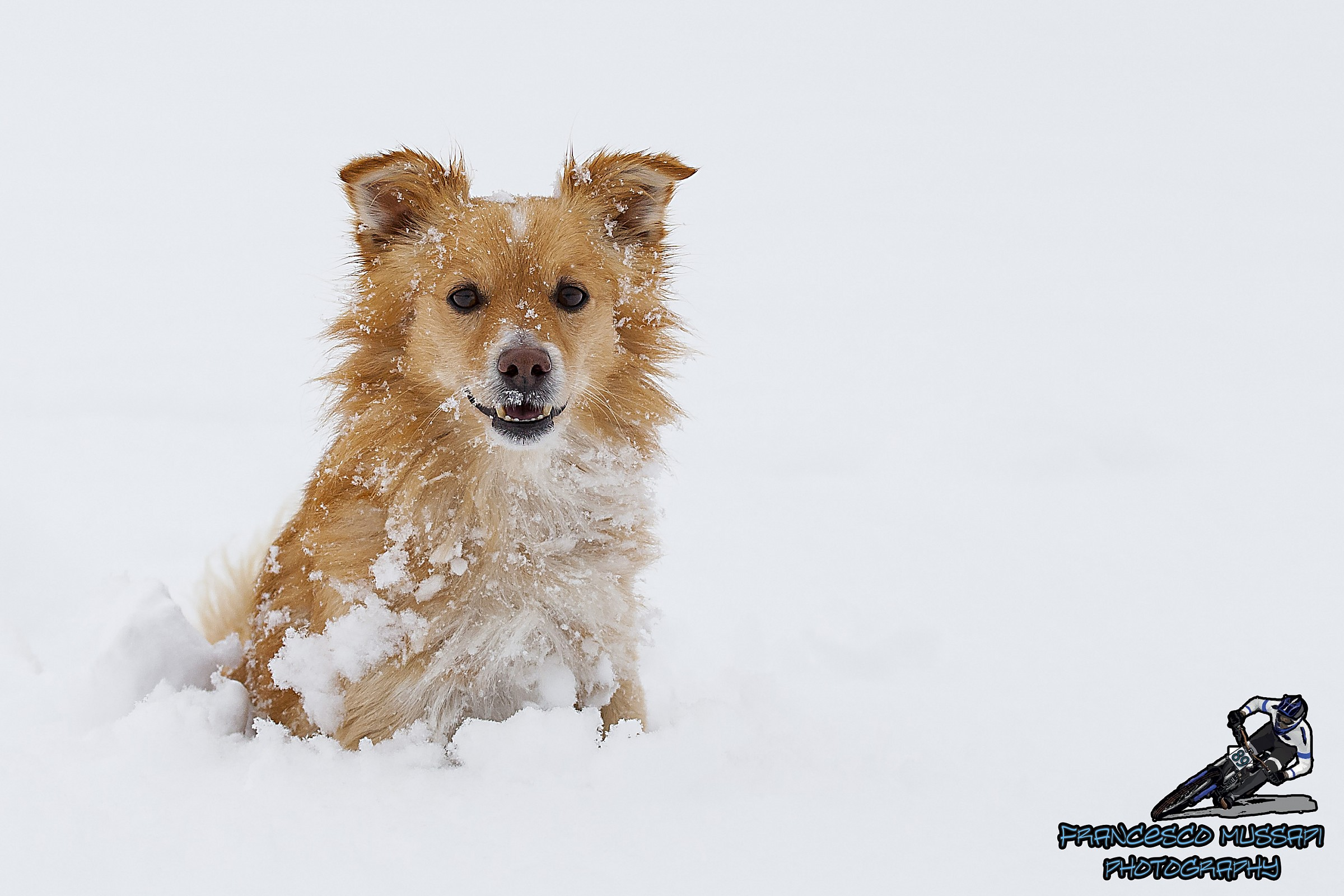 Happy in the Snow...
