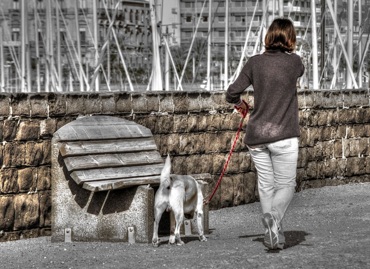 Walking, or everyone shows what he can....