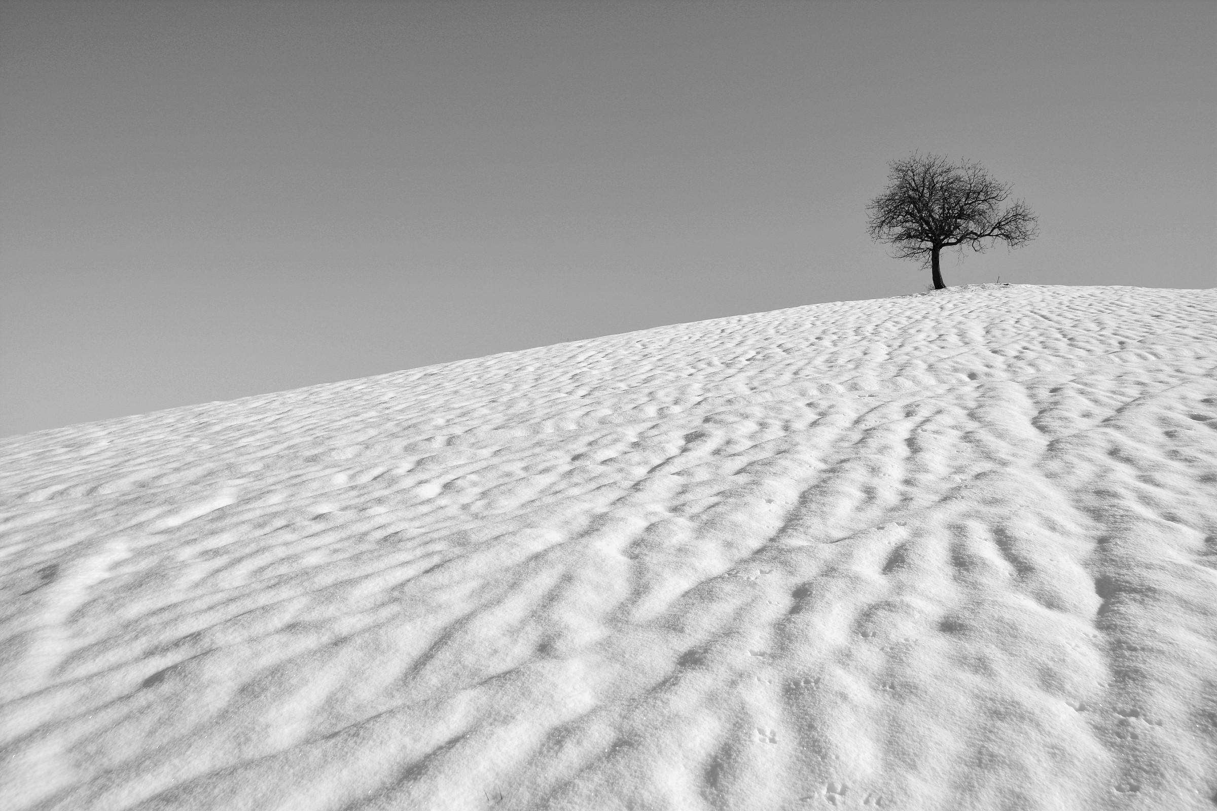 Serenity ......