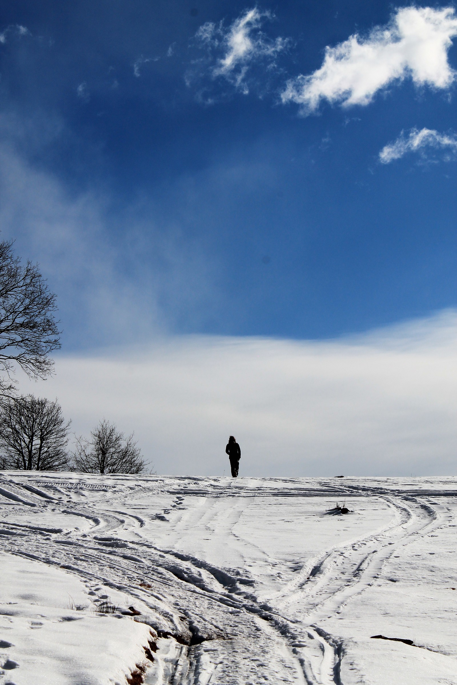 A solitary walk....