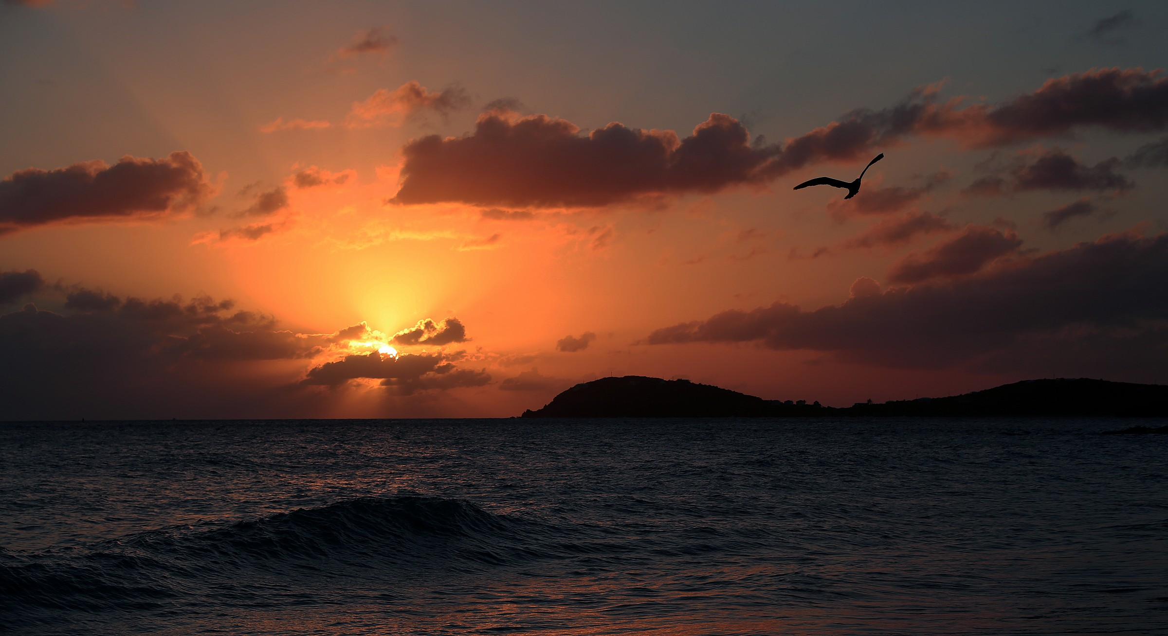 Morningstar bay...