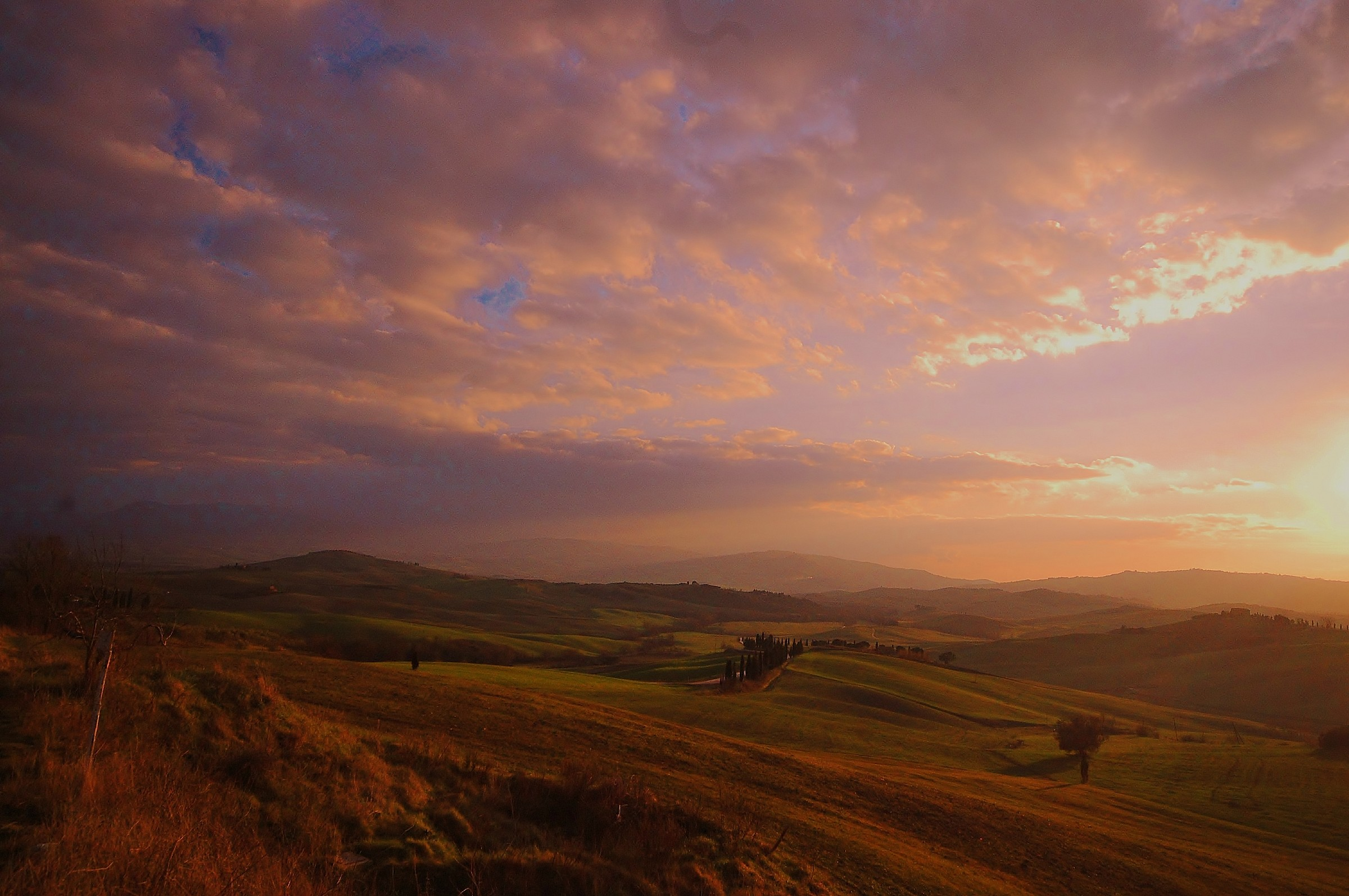 Siena countryside...