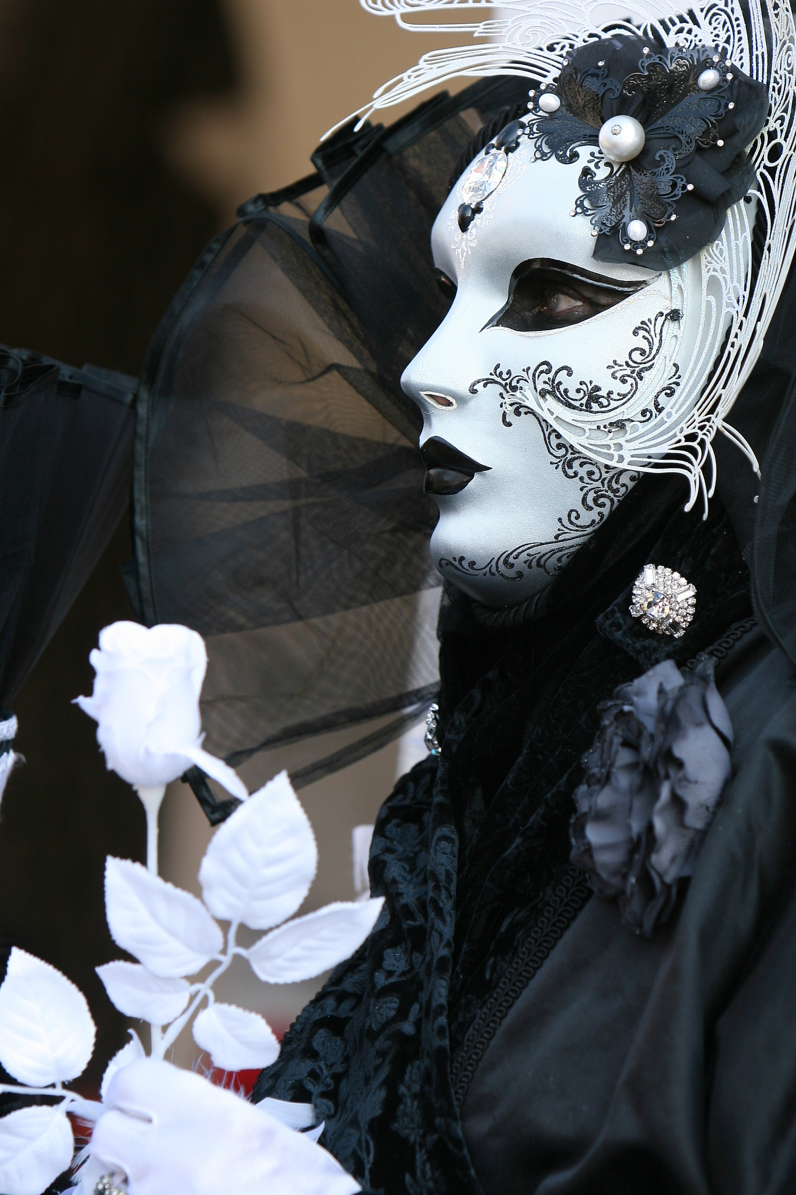 Maschere di carnevale...