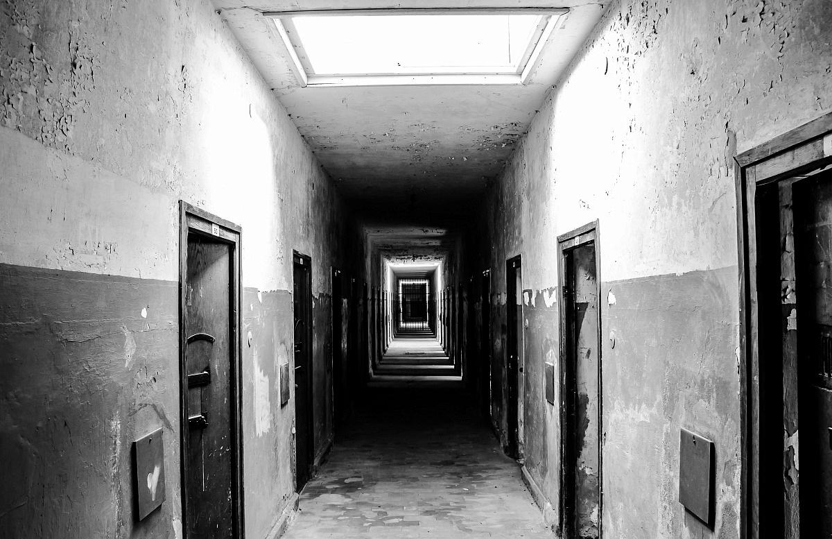Dachau 3...