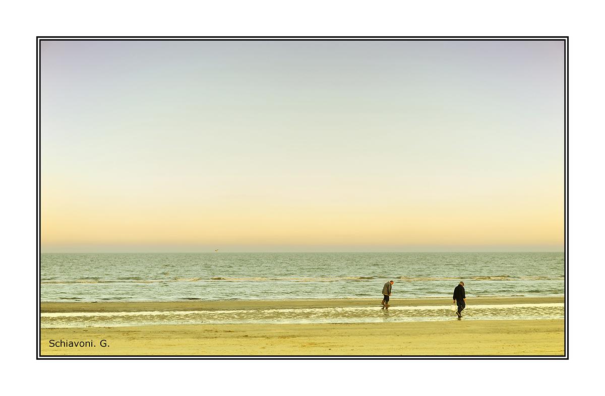 Sea landscape. .....