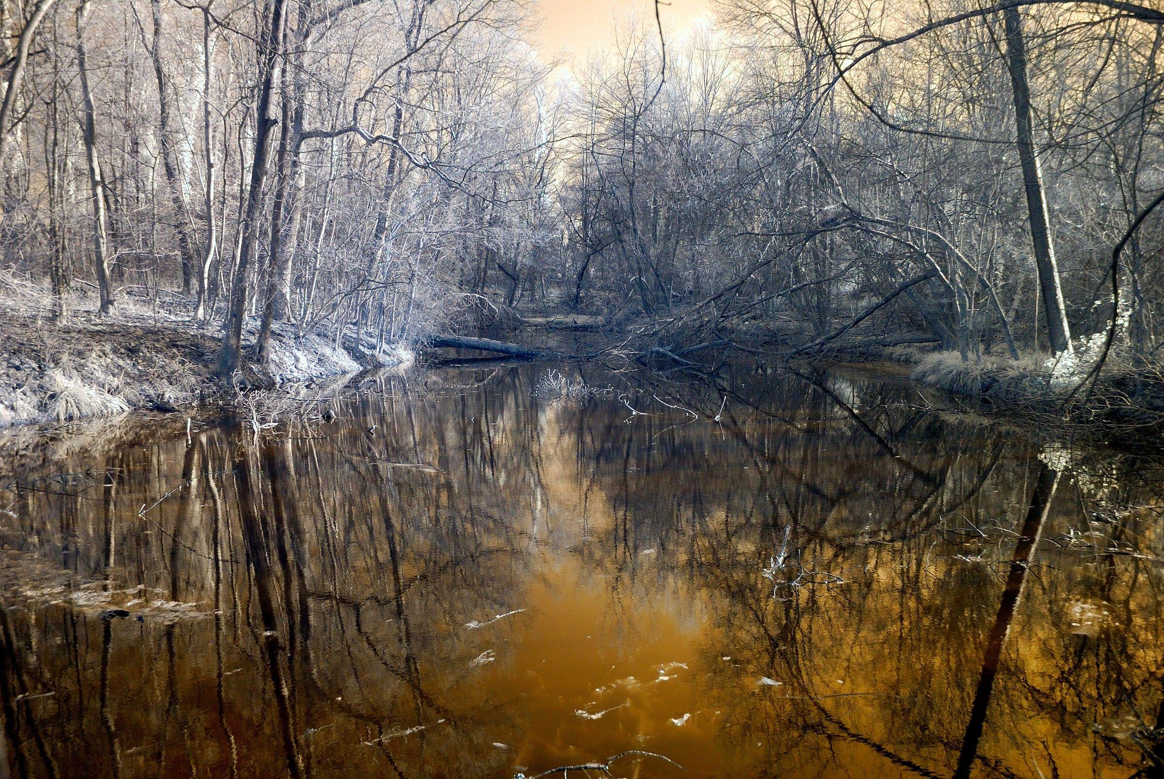 Lago nei boschi di Carrega(infrarosso)...