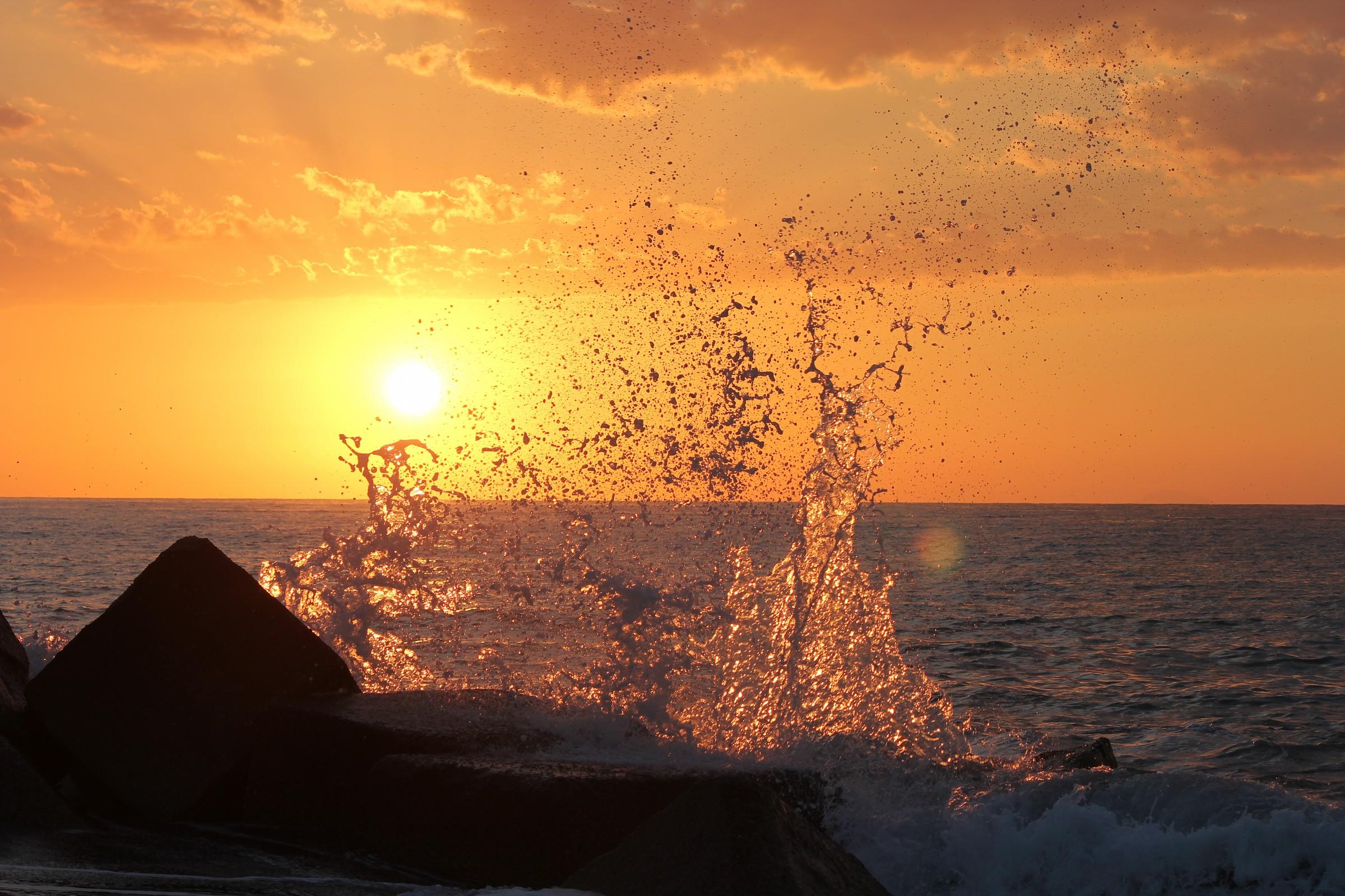 transparencies at sunset...