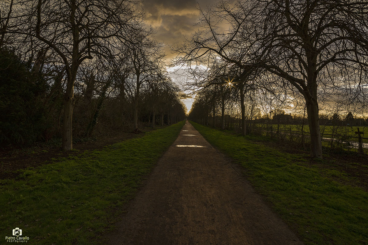 The long road to Richmond park...