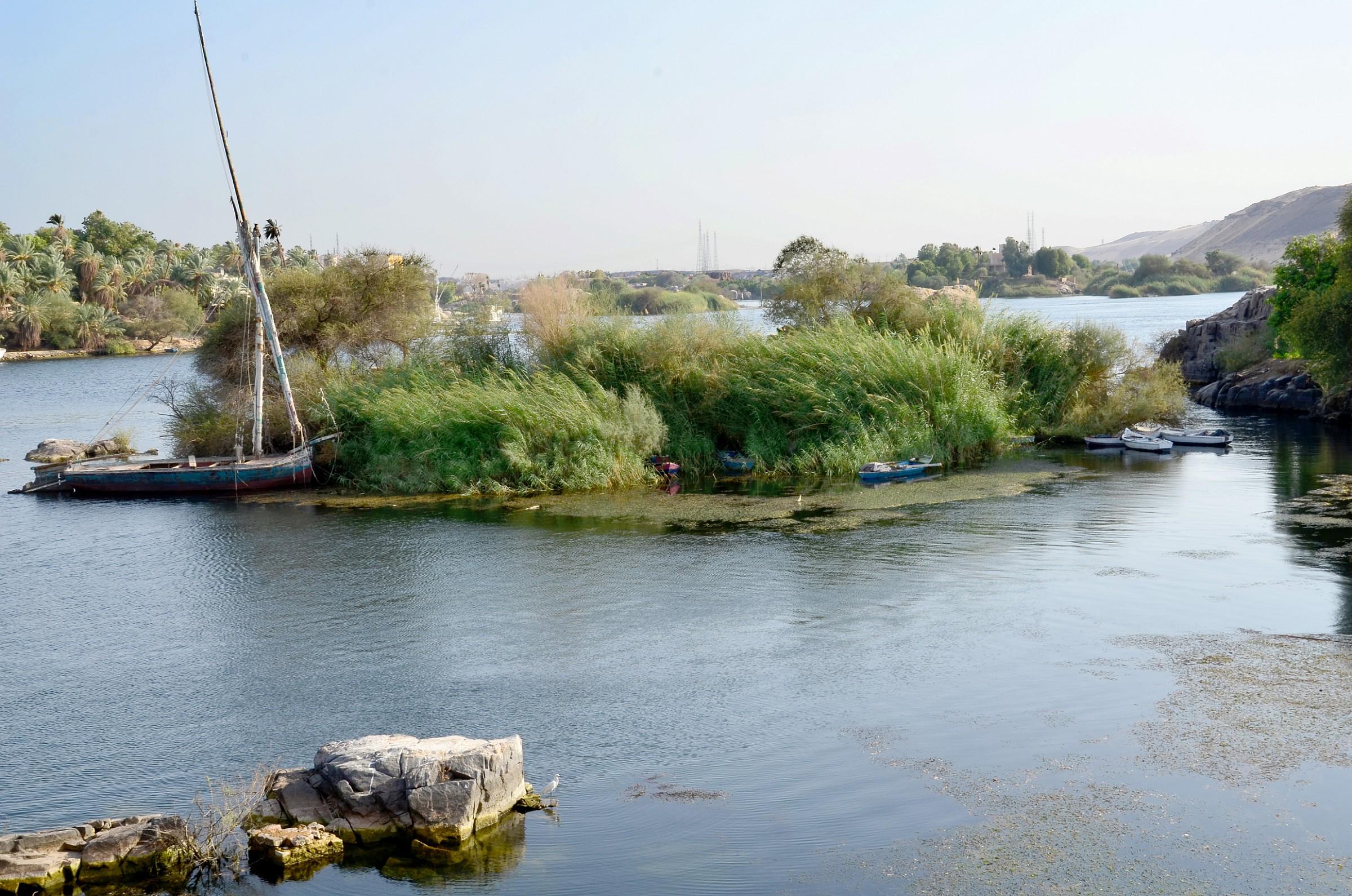 Nilo 2...