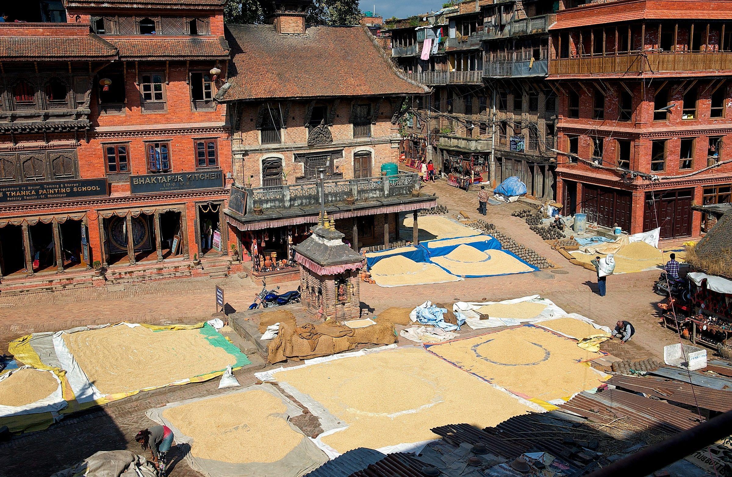 Force Nepal...