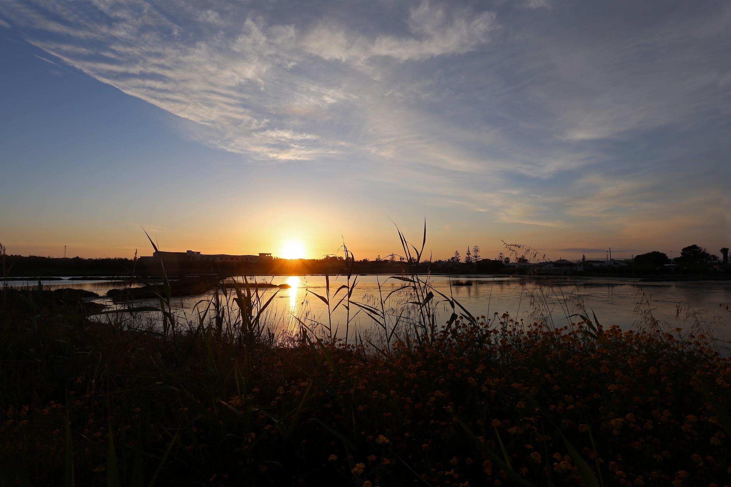 sunset on the pond...