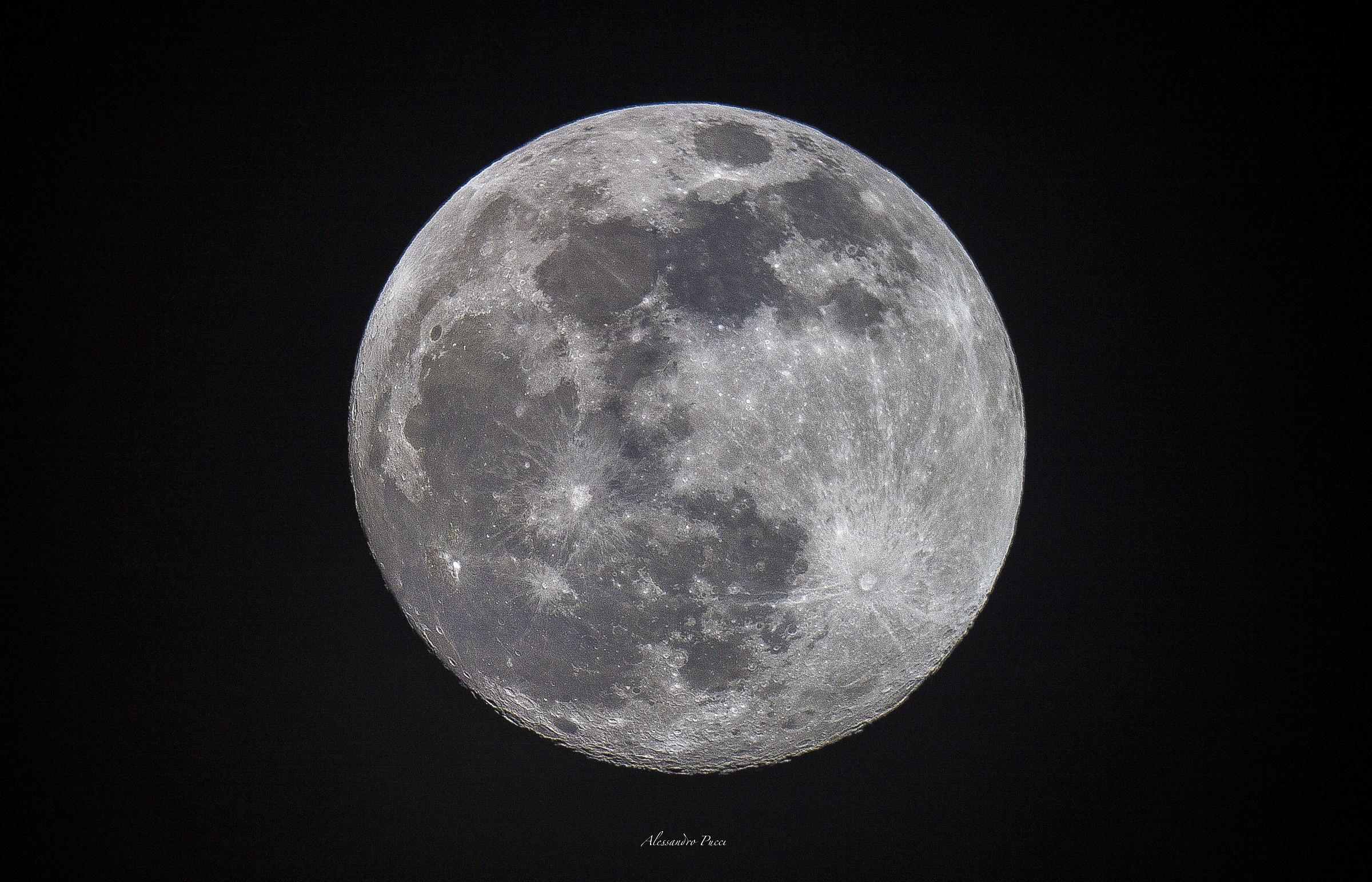 Luna Newton...
