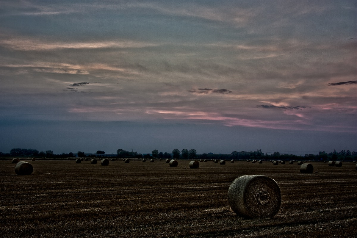 HDR Field...